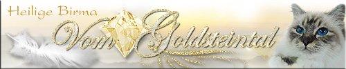 banner_goldsteintal